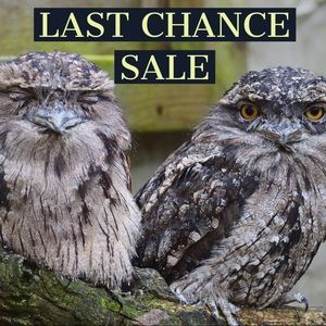 Tops - LAST CHANCE! CLOSET CLEAROUT!